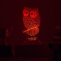customised Owl night lamp by Dezains - multicolour